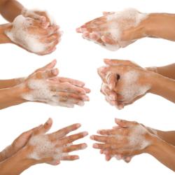 S che mains et bact ries agro info - Protocole de lavage des mains en cuisine ...